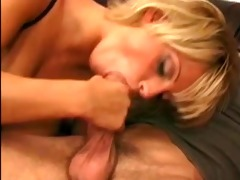 shorthaired golden-haired cougar with huge love
