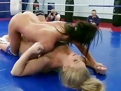 hot youthful cuties fighting