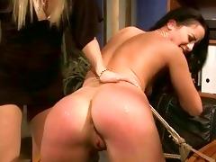 juvenile dominant-bitch punishing sexy beauty